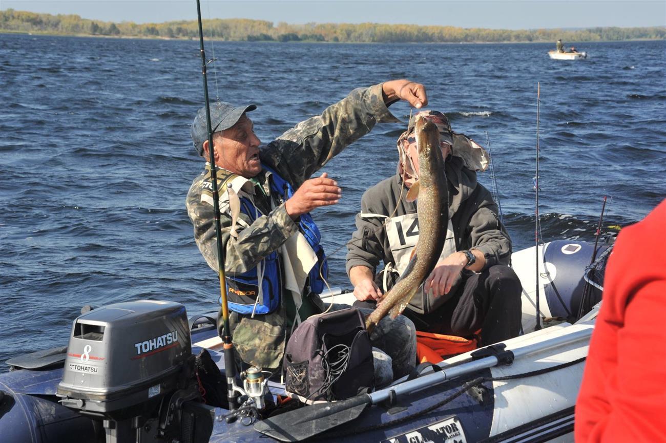 запреты на рыбную ловлю на волге