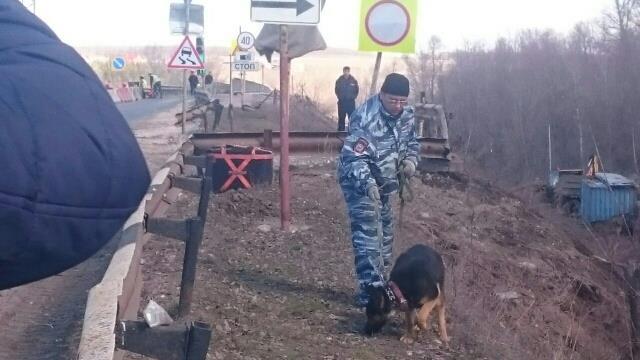 ВСамарской области натрассе отыскали боевые гранаты
