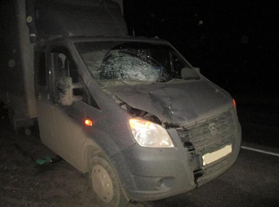 НаМ-5 под Самарой шофёр автофургона сбил насмерть мужчину
