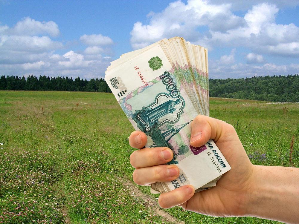 Арендаторы земельных участков задолжали в казну Рубцовска более 60 миллионов рублей