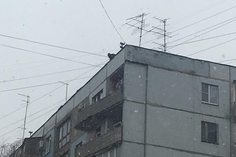 Полицейские и работники МЧС сняли буйного мужчину скрыши дома наЧернореченской