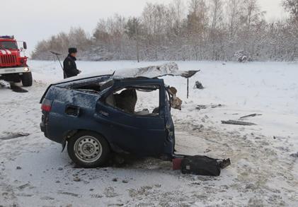 ВПестравском районе шофёр «двенадцатой» умер при столкновении сфурой