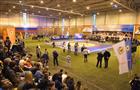 Финал открытого Кубка Самарской области по греко-римской борьбе
