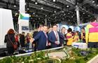 Дмитрий Азаров посетил выставочный стенд Самарской области на ВФМС-2017 в Сочи