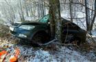 В Похвистневском район погибла пассажирка Skoda, врезавшейся в дерево