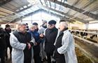 """СХП """"Экопродукт"""" улучшило качество дойного стада"""