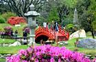 На набережной Свияги в Ульяновске появится Японский сад