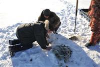 Замерзшие реки Самарской области почистили от браконьерских сетей