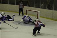 В Самаре открылся предсезонный хоккейный турнир на Кубок губернатора Самарской области