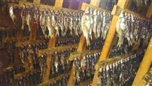 Отправляемся в Астрахань на весеннюю рыбалку