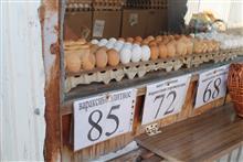 Перед Пасхой цены на куриные яйца останутся на прежнем уровне