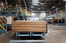 В Кировской области запустили новое производство фанеры