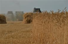 Хлеборобы Саратовской области собрали 2 млн тонн зерна урожая-2018
