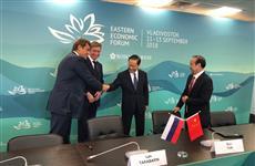 В Нижегородской области появится комплекс по производству ориентированно-стружечной плиты