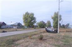 В Кинельском районе пострадали подростки, катавшиеся по селу на машине и врезавшиеся в дерево