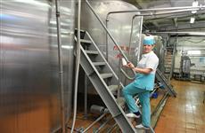 В Тольятти может появиться завод по производству сыра