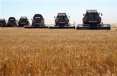 """Сельскохозяйственные земли """"Зерна Жизни"""" перевалили за 100 тысяч гектаров"""