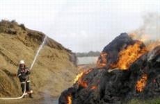 На берегу Воложки в с. Рождествено горело 42 тонны сена
