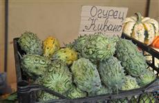 Что и почем продают на главной сельхозярмарке Самары