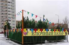 В Тольятти произошел конфликт между представителем мэрии и продавцом елок