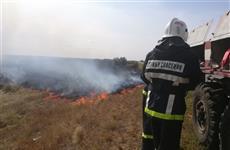 Масштабное возгорание сухой травы под Чапаевском ликвидировали