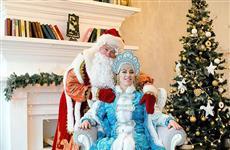 Сколько в этом году стоит визит Деда Мороза и Снегурочки?