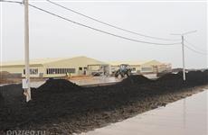 """""""Черкизово"""" построит еще четыре свиноводческих комплекса в Пензенской области"""