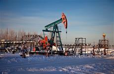 Нефтяные компании готовы заплатить 1 млрд руб. за четыре месторождения в Самарской области