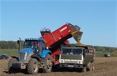 Минсельхозом России одобрил кредиты сельхозпроизводителям Мордовии на 5,7 млрд рублей