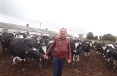 У кряжских черно-пестрых коров большой потенциал
