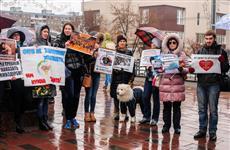 Около трехсот самарцев выступили против жестокого обращения с животными