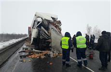 На трассе М-5 у Сызрани отцепившимся прицепом грузовика убило водителя встречной фуры