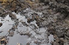 В Ставропольском районе возбуждено уголовное дело по загрязнению окружающей среды с ущербом в 2,8 млн рублей