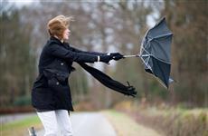 В регионе вновь ожидается порывистый ветер и гроза