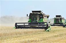 В губернии зафиксирована рекордная урожайность зерновых - 85 центнеров с гектара