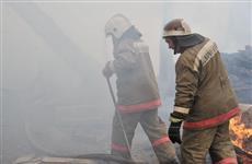 В Кинель-Черкасском районе ночью при пожаре погибли трое детей
