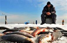 Самарцев просят рассказать, сколько рыбы они ловят в год