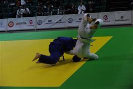 В Самаре прошел чемпионат области по дзюдо