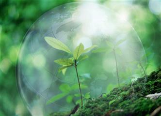 Экология стала новой стратегией развития России