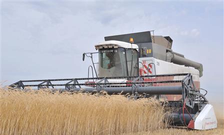 Рекорды аграриев региона отметили на федеральном уровне