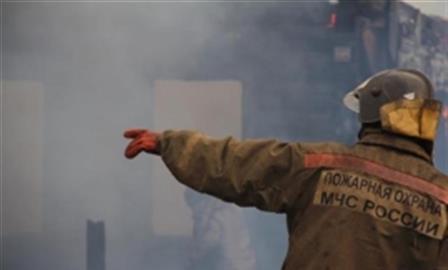 В Самаре на пожаре в зоогостинице погибли 40 кошек и собак