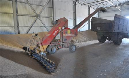 В регионе планируют собрать около 2,8 млн тонн зерна