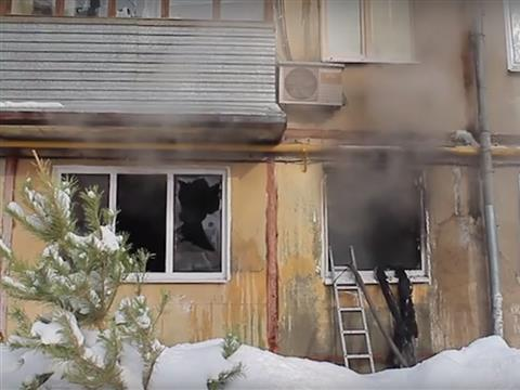 В Самаре на пожаре погибли кошки, собака и попугай
