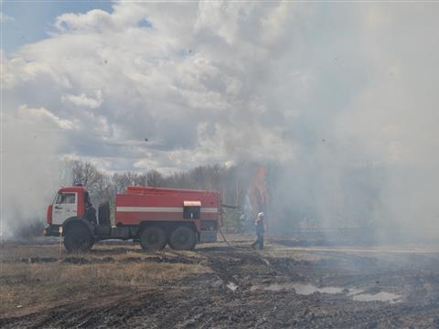 В Самарской области прошли учения по тушению лесных пожаров