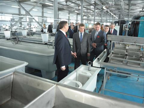 В регионе открыт завод по воспроизводству молоди стерляди и щуки