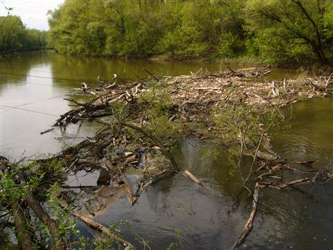 На реке Кинель ликвидирована браконьерская запруда