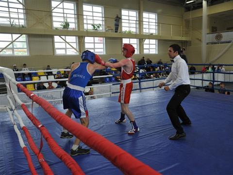 Глава области посмотрел бои межрегионального турнира по боксу им. Е. А. Дерягина