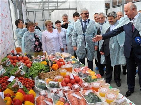 """ОАО """"Тепличный"""" запустило новую теплицу для выращивания томатов"""