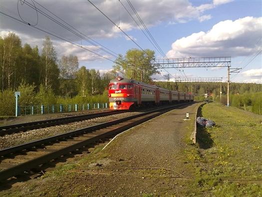 Под Сызранью пассажирский поезд Пермь - Адлер сбил 12 коров