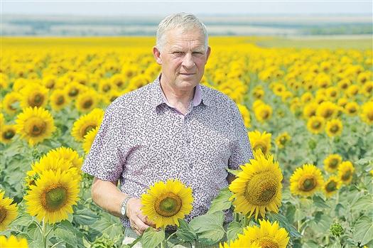 Н.А. Золотов в полях от зари до зари. Из кабинета в растениеводстве много не наруководишь. Землю надо чувствовать, понимать, любить.